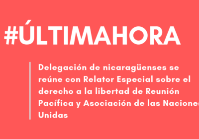 Nicaraguan Delegation meets with the United Nations Special Rapporteur on the Rights to Freedom of Peaceful Assembly and of Association