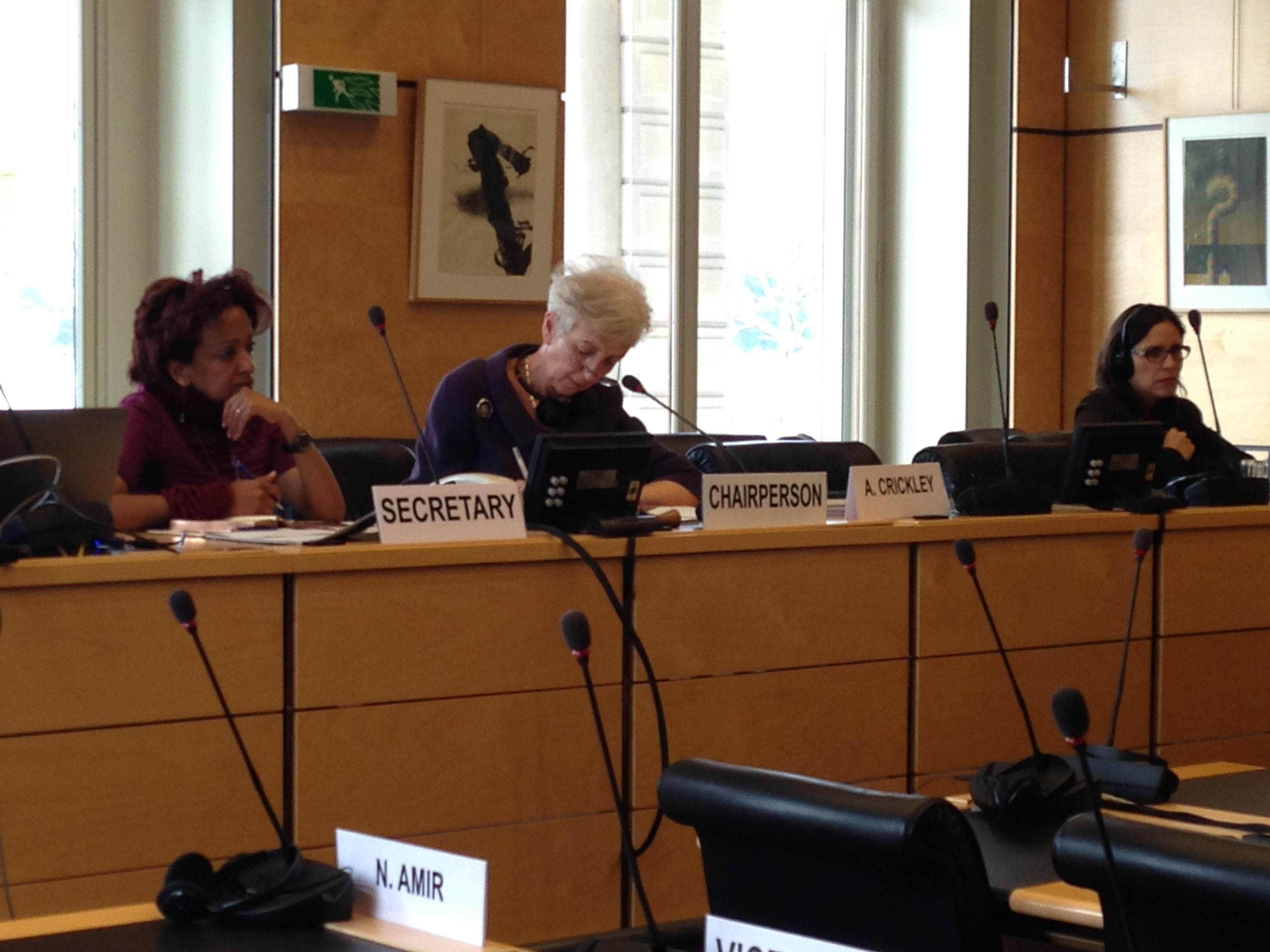 89th Session of the Committee on the Elimination of Racial Discrimination (CERD) Begins in Geneva.