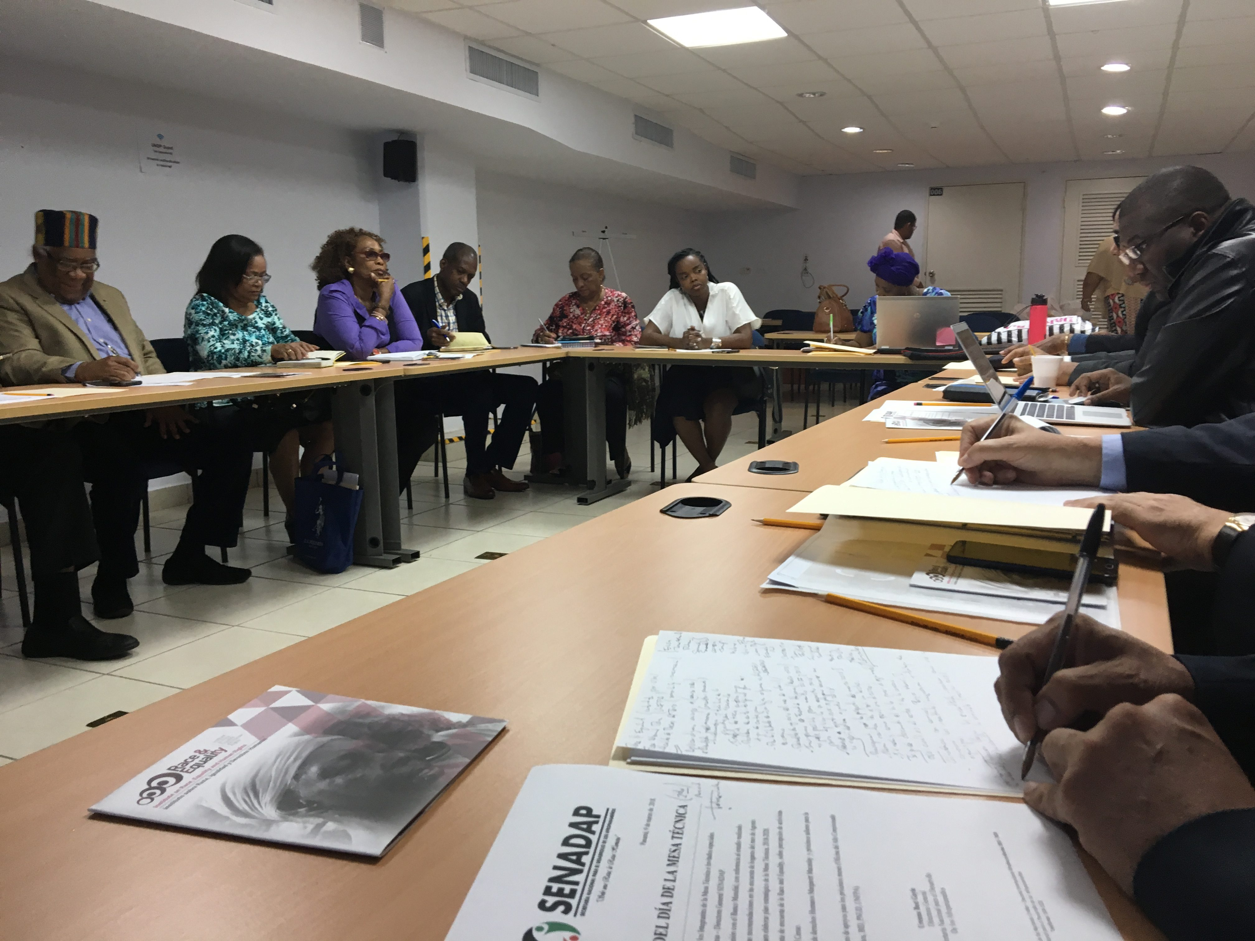 Supporting the Visiblity of Afro-Panamanians in National Statistics