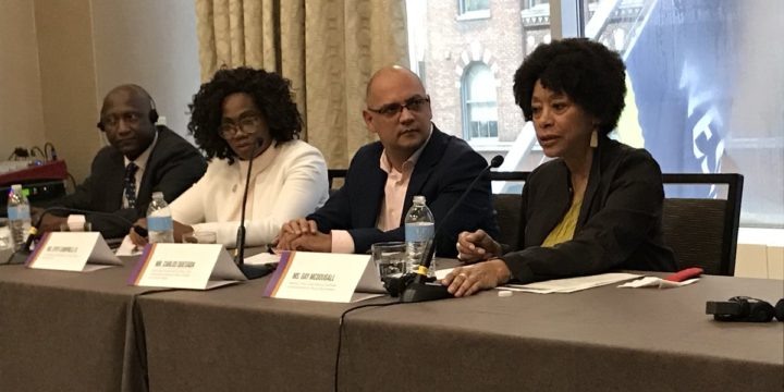 Vice-President of Costa Rica and Vice-Chairpersons of the UN CERD Committee highlight the need for states to develop Action Plans during the Decade for People of African Descent