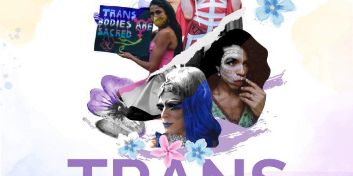 Dia Internacional da Visibilidade Trans: reconhecimento da luta pela defesa e proteção dos direitos da população trans da região