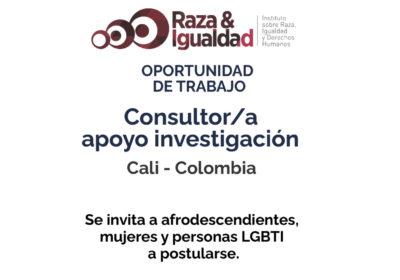 Oportunidad de Trabajo – Consultor/a apoyo investigación
